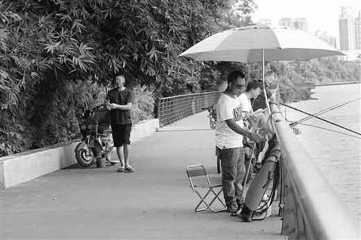 """柳州最美滨水自行车道""""求""""维护升级"""